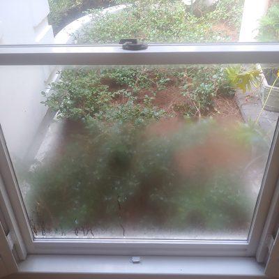 window-glass